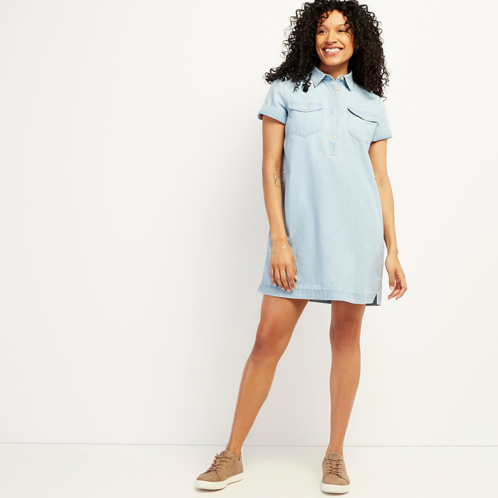 Roots Sherbrook Chambray Dress