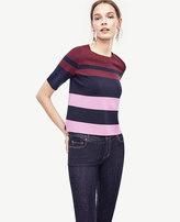 Ann Taylor Petite Colorblocked Knit Topper