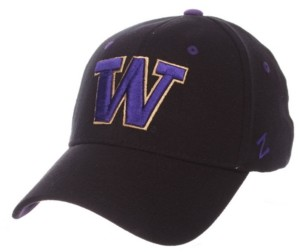 Zephyr Washington Huskies Stretch Fitted Cap
