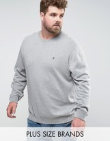 French Connection PLUS Crew Neck Knitted Sweater