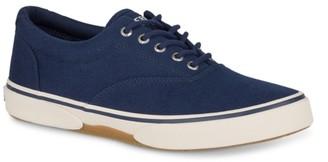 Sperry Top Sider Halyard CVO Sneaker