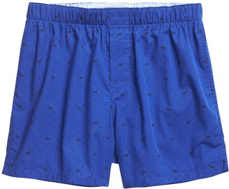 Banana Republic Boxer Dog & Paws Boxer