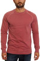 Burgundy Surrey Sweatshirt - Men's Regular