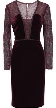 Badgley Mischka Embellished Lace-paneled Velvet Dress
