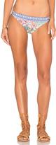 Nanette Lepore Greek Tiles Charmer Bikini Bottom