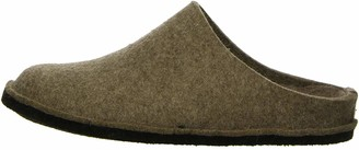 Haflinger Flair Soft Unisex Adult Unlined Slippers Beige (Beige (550 peat)