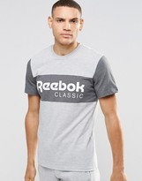 Reebok Archive Stripe Crew T-Shirt In Gray AY1154