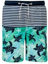 Snapper Rock Turtle Board Shorts