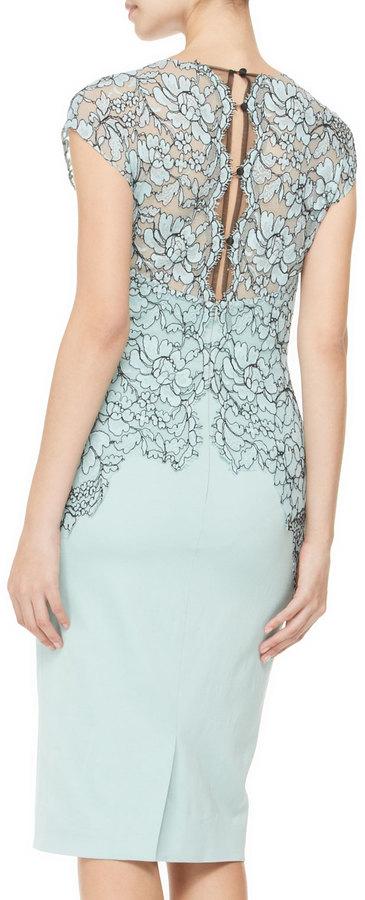Lela Rose Cap-Sleeve Placed-Lace Dress