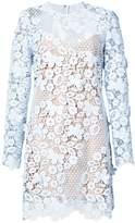 Self-Portrait lace shift dress