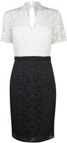 SET Womens Two Toned Lace Dress