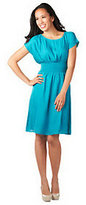Cynthia Vincent CV by Knee Length Smocked Waist Woven Dress