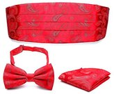 Pense'e PenSee Mens Formal Paisley Bow Tie & Hankerchief & Cummerbund Set-Various Colors