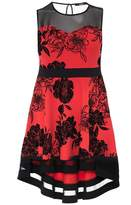 Quiz Curve Red And Black Floral Print Sweetheart Neckline Dress