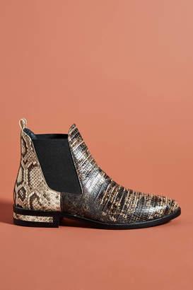 Freda Salvador Snake-Printed Chelsea Boots