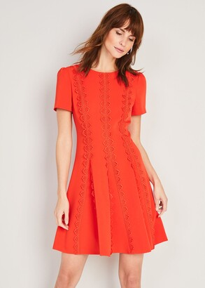 Phase Eight Tavi Lace Detail Dress