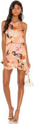 Krisa High Low Halter Mini Dress