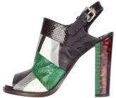 Dries Van Noten Snakeskin Stripe Sandals