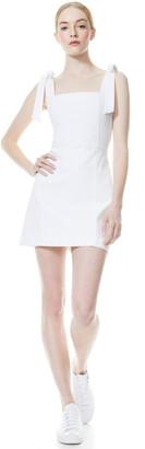 Maryann Tie Shoulder Mini Dress