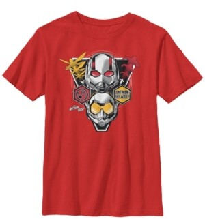 Fifth Sun Marvel Big Boy's Ant-Man The Wasp Triangular Badge Short Sleeve T-Shirt
