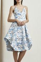 Keepsake Heart Strong Dress