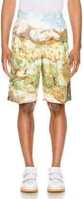Jacquemus Costume Shorts in Landscape Print   FWRD