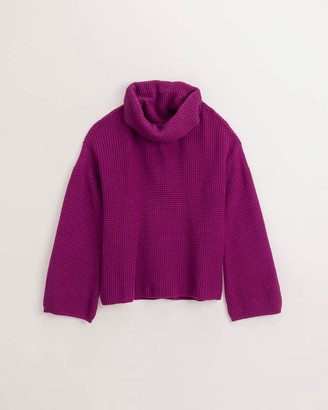 Splendid Cowl Neck Sweater