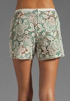 Anna Sui Filigree Print Crinkle Chiffon and Lace Shorts