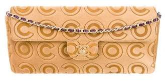 Chanel Coco Ponyhair E/W Flap Bag