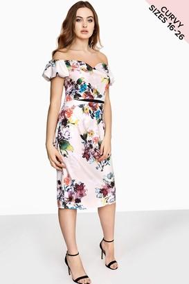 Little Mistress Curvy Floral Bodycon Dress