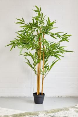 Urban Outfitters Faux Bamboo Tree - Assorted ALL at