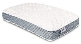 Sealy Memory Foam Pillow with Gusset, Standard