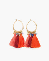Chico's Austyn Hoop Earrings