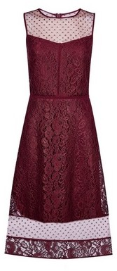 Dorothy Perkins Womens **Luxe Mulberry Red Lace Mix Midi Dress, Red