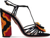 Aquazzura Samba suede sandals