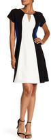 Sandra Darren Colorblock Short Sleeve Dress