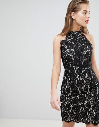 Morgan Allover Lace High Neck Mini Dress