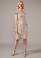 Thumbnail for your product : Phase Eight Genevieve Tapework Lace Dress