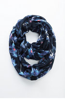 J. Jill Midnight Meadows Infinity Scarf