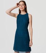 LOFT Petite Lace Flare Dress