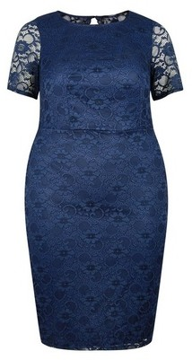 Dorothy Perkins Womens **Dp Curve Navy Lace Pencil Dress