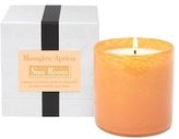 Lafco Inc. Sun Room Sunglow Apricot Candle