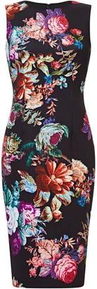 Adrianna Papell Glorious Garden Sheath Dress