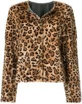 Yves Salomon leopard print short coat