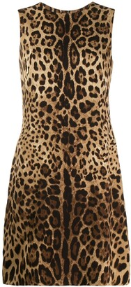 Dolce & Gabbana Leopard Pattern Shift Dress