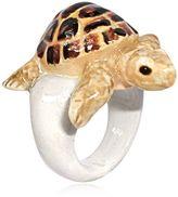Nach Turtle Ring