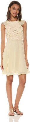 Nanette Lepore Nanette Women's Slvls Chiffon F&F Dress W/Lace Bodice