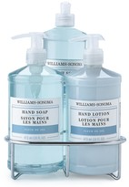 Williams-Sonoma Dish Soap, Hand Soap & Lotion Set, Fleur de Sel
