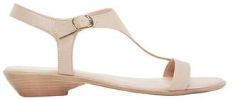 Sandler Sandra Nude Glove Sandal