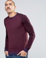 Ted Baker 100% Merino Wool Sweater